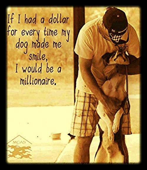 Why dogs are priceless.....