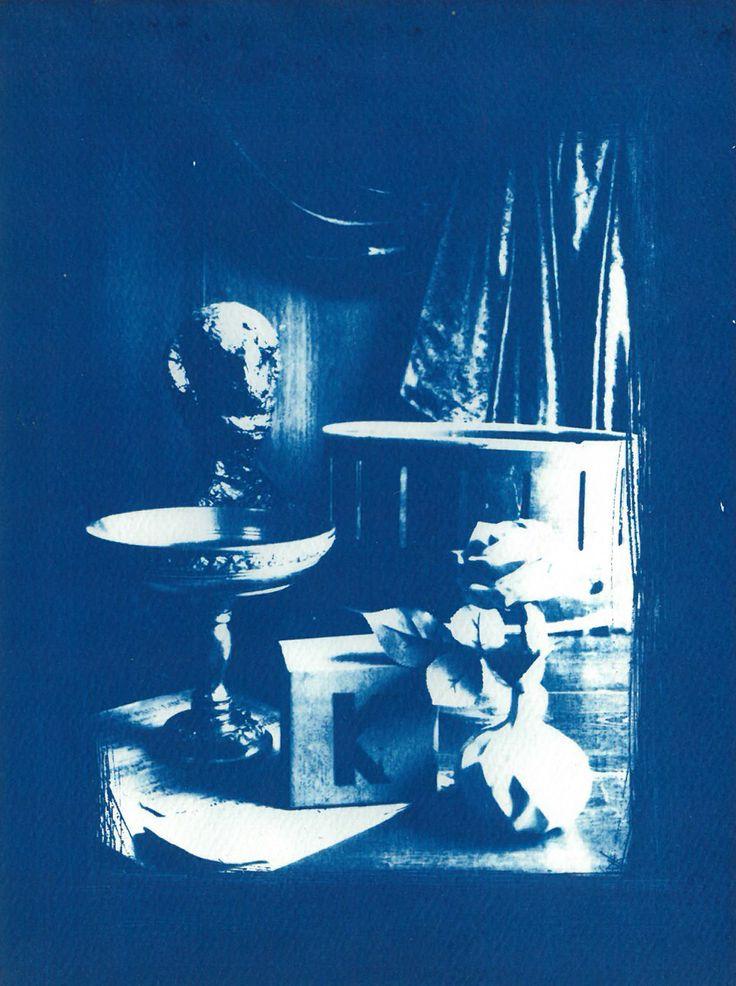 Inspired by Jessica Ferguson- Cyanotype print