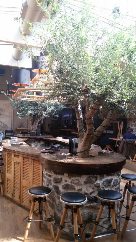 -olive green cafe- olive trees, sunshine, coffee house, this is Greece ♡ ☕