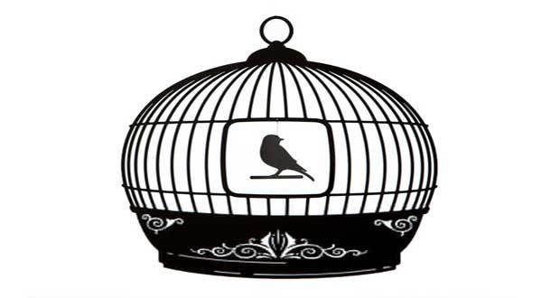 Ilustraciones Cristianas - La Jaula de Pájaro † Devocionales Cristianos
