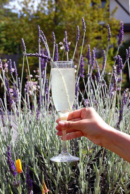 Lavender, gin, limoncello, lemon juice, champagne