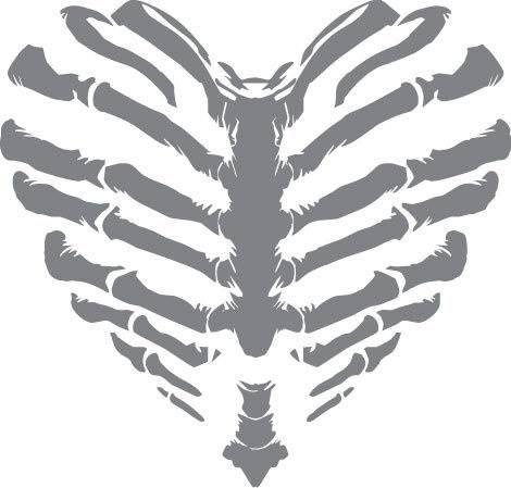 Rib cage skeleton heart