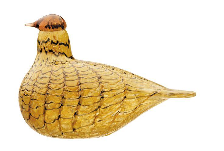 iittala Birds ByToikka - Summer Grouse - 110x150mm YELLOW