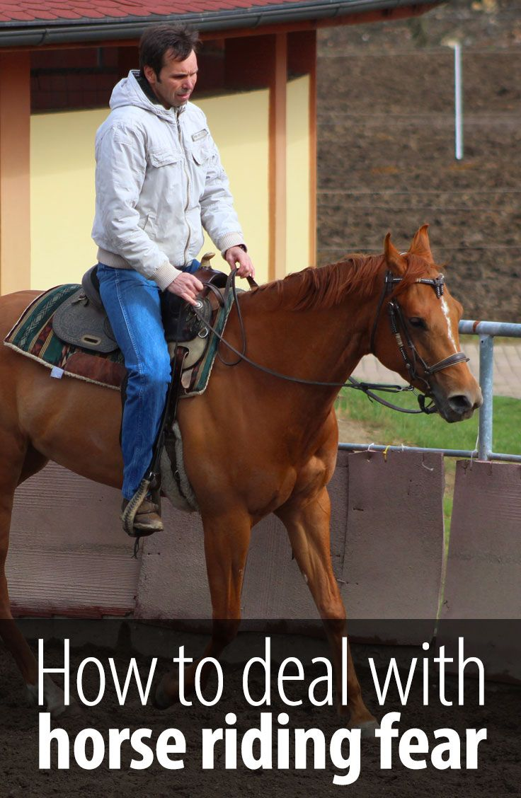 If you have ever been scared around horses, you know it is a nasty feeling. Take a look at how I dealt with my horse riding fears.