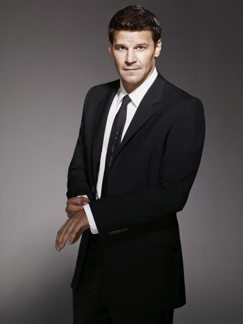 One of the hottest FBI agents ever... David Boreanaz as Seeley Booth.