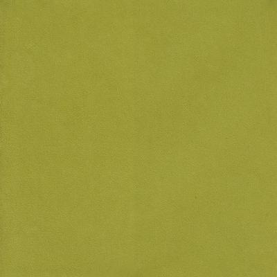 Heritage - Pernod - Indoor Multipurpose Fabric Pindler