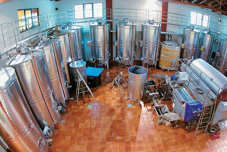 Cutting edge tech-equipped winery