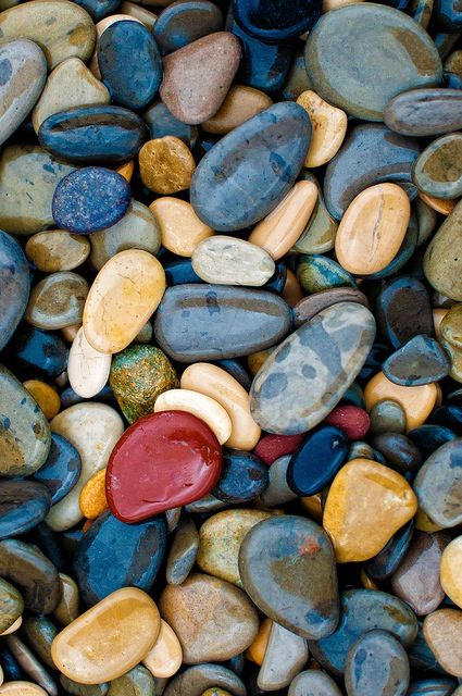 Lots of.....Pebbles