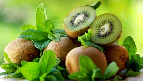 Permanto exports about 1.000 tons annually kiwi, between September and November, directly from the producer. Exports of kiwifruit, conducted to companies of Italy.