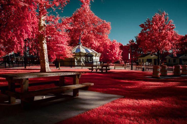 The Day Wonderland Stood Still... Bruce W. Berry Jr http://vimeo.com/75537131#