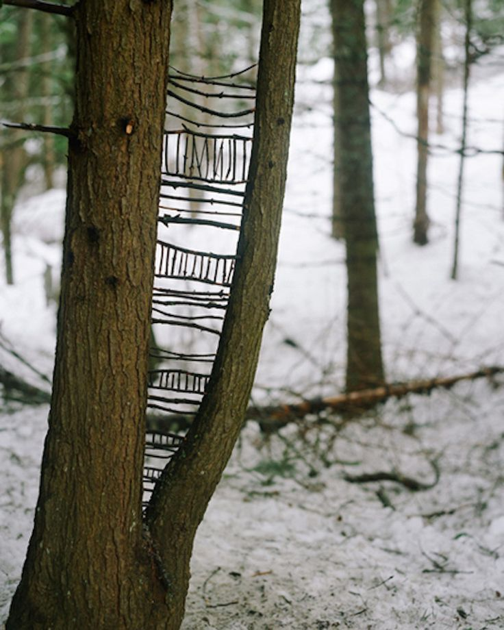 Nils Udo | The Artist Of The Earth this would keep the kids busy for a while #outdoors