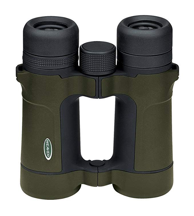 Weaver Kaspa 8x42 Binocular Black Review Binoculars Binoculars For Kids Night Vision Monocular