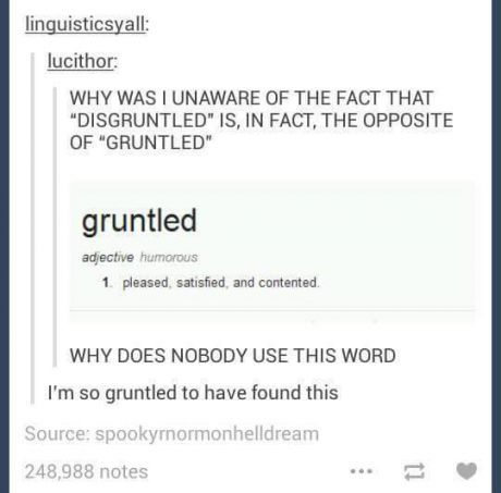 late night tumblr text posts - Google Search