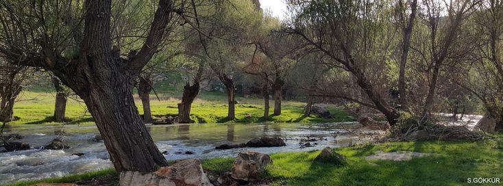 Sürdürülebilir Yaşam için Sürdürülebilir Sulama - Doğa ve Çevre - Tarım | Apelasyon