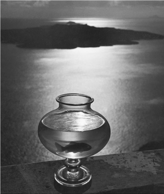 """GREECE. Cyclades. Santorini (Santorin) Island. 1937. Goldfish bowl. """"The captive fish in its bowl and the open sea symbolize man who, being tied to earth, can never quite break free by Herbert List"""