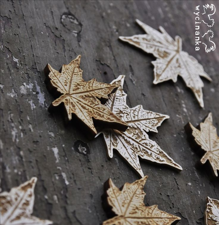 Lasercut autumn leaves - engraved cardboard and plywood.