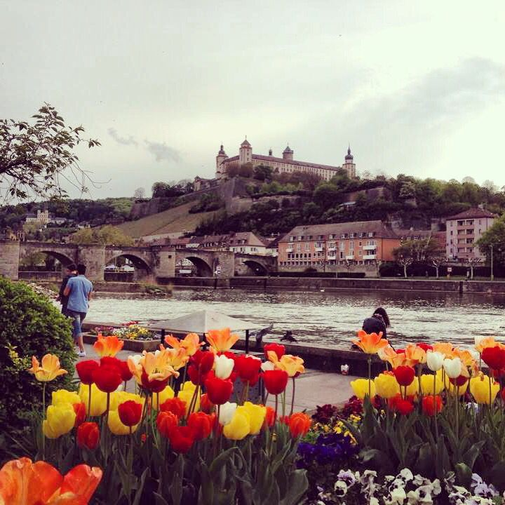 Spring in Wuerzburg, Bavaria, Germany. I miss this place, but I'll be back to the Africa Festival in June!