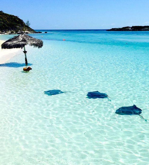 Bahamas Beach: 10 Gorgeous Photos Of Life In The Bahamas