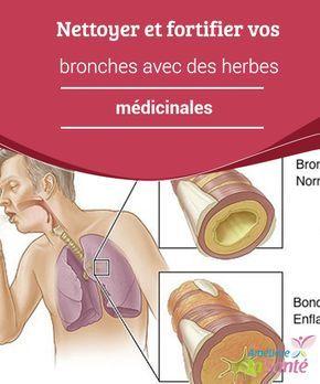 Nettoyer et fortifier vos #bronches avec des #herbes médicinales   Les bronches sont ces #conduits indispensables qui unissent la trachée aux #poumons. Ce sont elles qui nous permettent d'apporter de l'oxygène à #l'organisme.