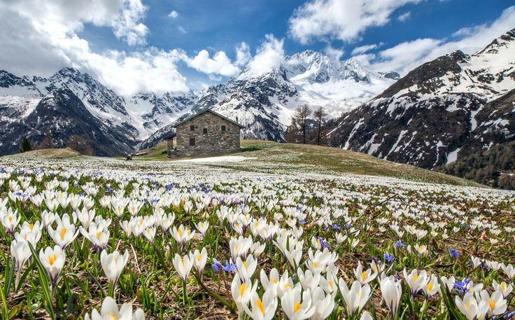 Весна в Альпах, Roberto Sysa Moiola. Ловите мгновения на Яндекс.Картинках.