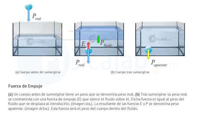 (a) Un cuerpo antes de sumergirse tiene un peso que se denomina peso real. (b) Tras sumergirse su peso real se contrarresta con una fuerza de empuje (E) que ejerce el fluido sobre él. Dicha fuerza es igual al peso del fluido que se desplaza al introducirlo. (imagen izq.). La resultante de las fuerzas E y P se denomina peso aparente. (imagen dcha.). Esta fuerza será el peso del cuerpo dentro del fluido.