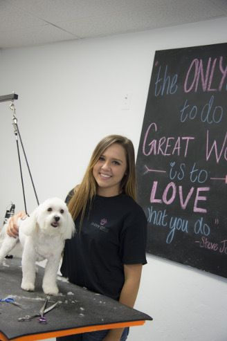 20 best dog grooming oklahoma city images on pinterest doggies pet sitting vs pet boarding which is better for your dog solutioingenieria Gallery