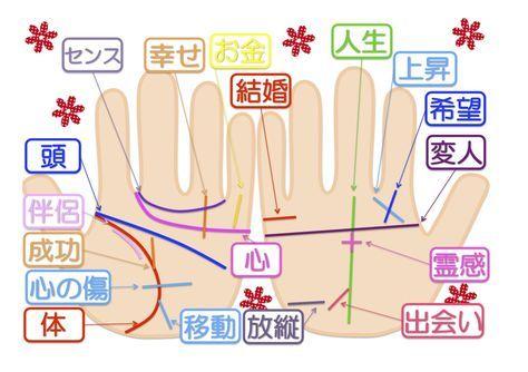 手相を見るときは、左右どちらの手の平か知っていますか?手相の流派や国によっても様々な意見がありますが、一般的には両方の手の平を見ます。