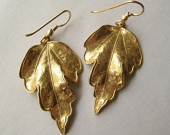Leaf Earrings, Bronze Leaf Gold-Fill Earrings