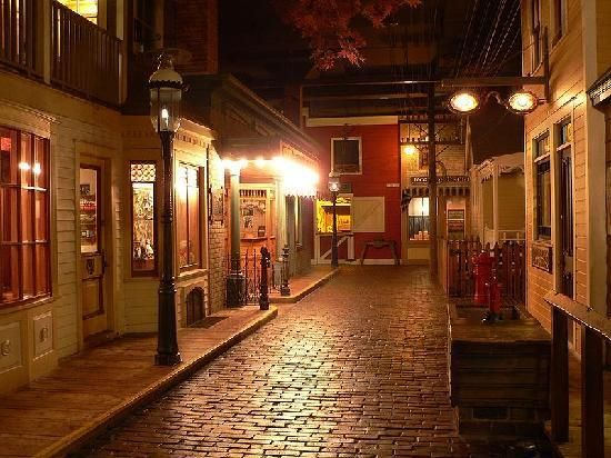 """Milwaukee public museum - this is the """"Streets of Old Milwaukee"""" exhibit inside the museum. It is so much fun. Complete with a General Store that sells old fashioned candy and goodies!"""