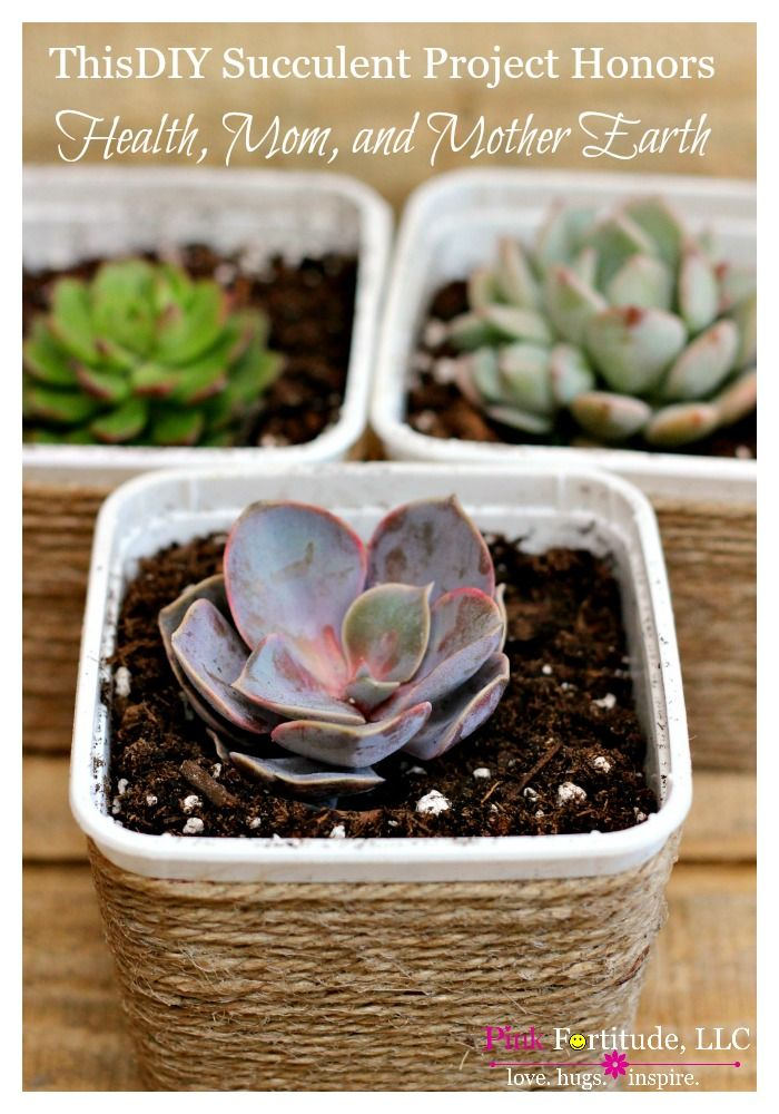 One year ago I made some big health changes. To celebrate my new lifestyle, I upcycled my first container of vegan food into this adorable DIY for succulents. Today, this project is not only honoring my health, but also Mom, and Mother Earth.