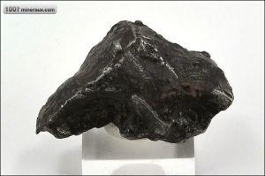 Météorite Sikhote-Alin - Russie - Fossiles 34 mm / 21 g