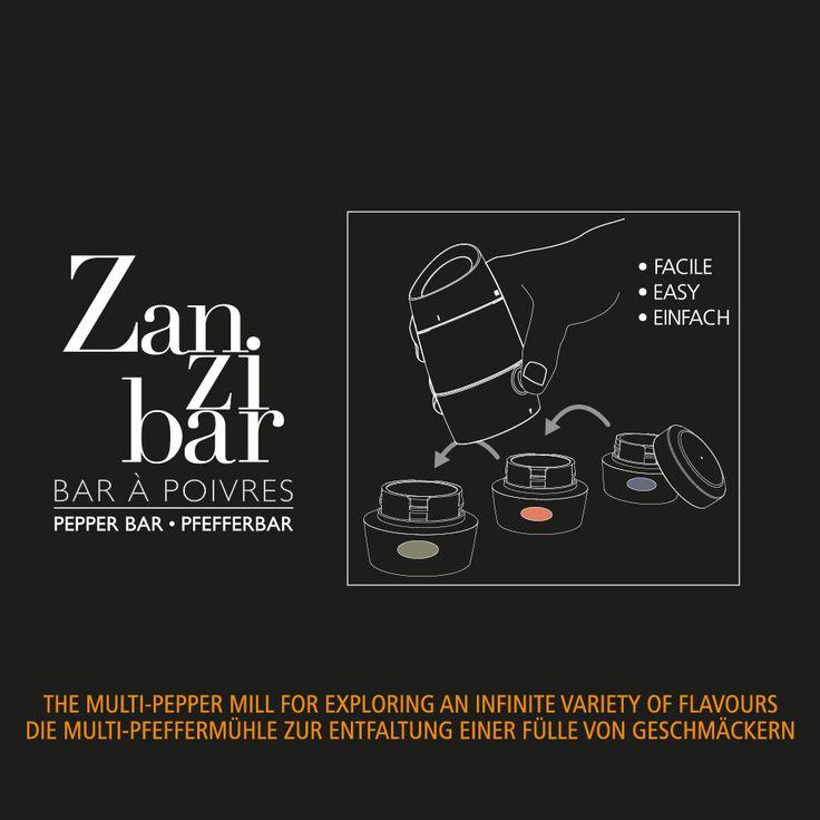 ZANZIBAR multi pepper mill by Peugeot - 2016 on Behance