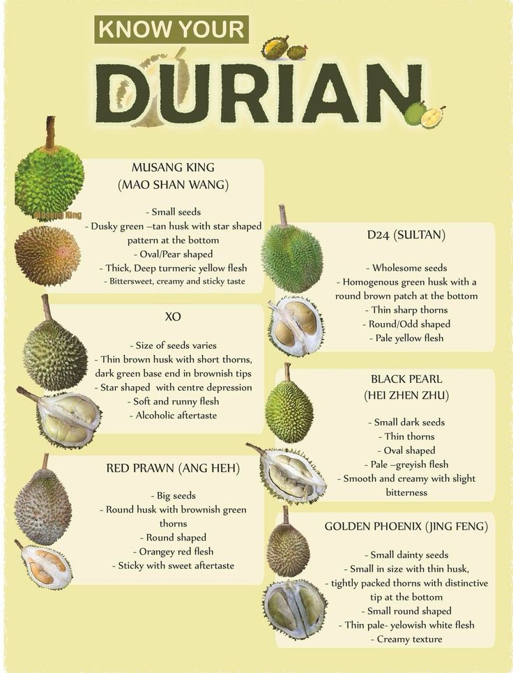 Durian image by Kay Tee on Nutrition Funny fruit