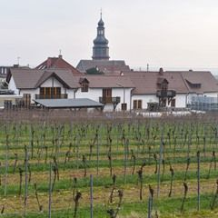 FILE Village of Kallstadt in Germany; birthplace of Donald Trump's grandparents