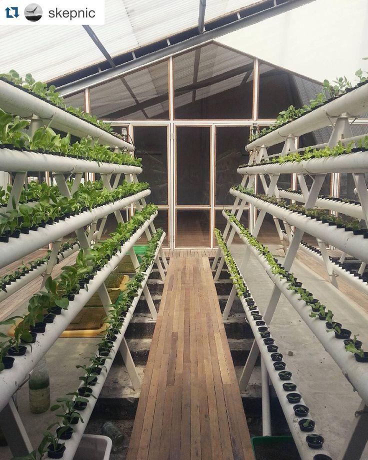 hydroponics and aeroponics research Hydroponics, aeroponic and aquaponic as compared hydroponics aeroponics and research conclude the aquaponics farming generally showed a quicker and more.