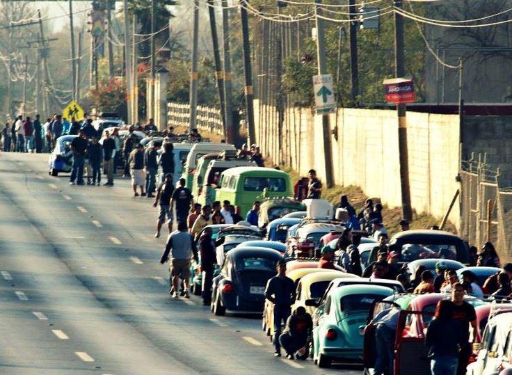 Amistad Vochera 2016, 1400 Volkswagen reunidos en Monterrey