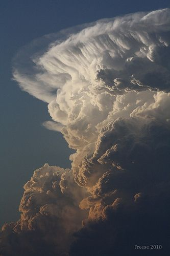 Kinsey Cloud