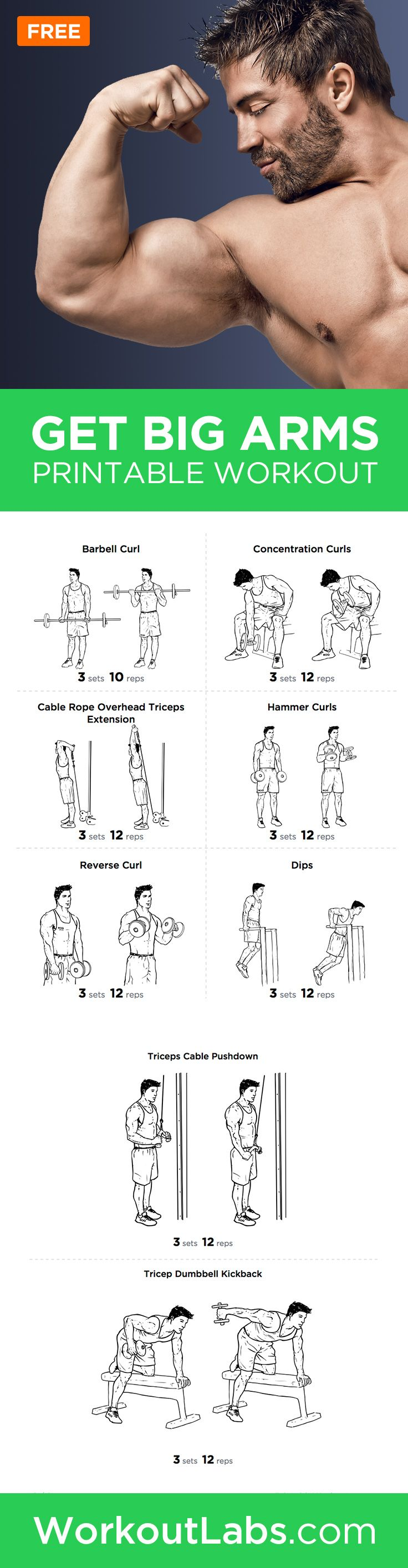 Big Arms Workout: Biceps and Triceps Exercises Printable Routine – Summer is just around the corner, so it's time to show off arms that are ripped and toned with this high intensity workout. http://papasteves.com