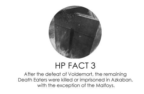 HP Facts - harry-potter-vs-twilight Photo