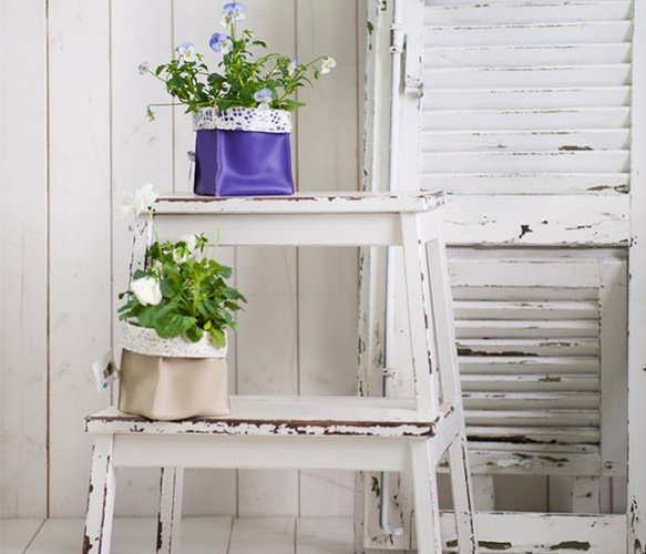 Considering a mini white washed ladder I spotted at Junk as a plant area for the kitchen. Something like this.