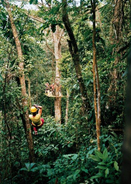 Seeing Costa Rica by zip-line–here at Titi Canopy, near Quepos–brings you eye level with the sloths and monkeys that you'd otherwise see only from a distance.