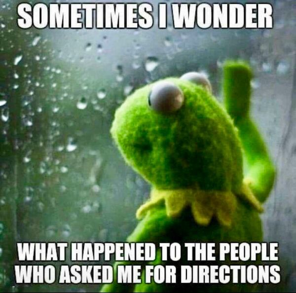 Keep Calm And Movin Right Along The Muppets: 19 Best Kermit Memes Images On Pinterest