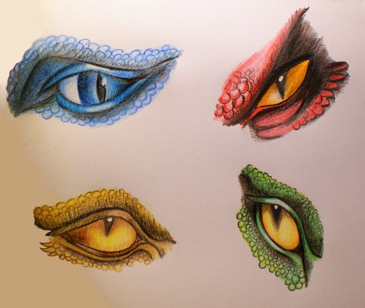 Saphira, Thorn, Glaedr and Firnen. No Shruikan though - the stone dragon eye things - use as design!!!