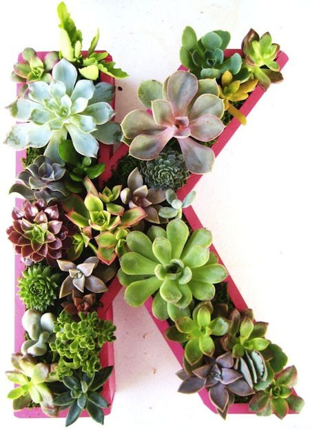 Plant A Vertical Succulent Garden by AphroChic, via Flickr