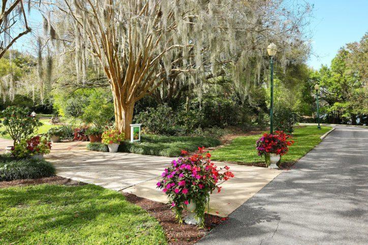 e5a6f2023922527fe9cc901ac3427aa0 - Florida Botanical Garden Florida Botanical Gardens December 5