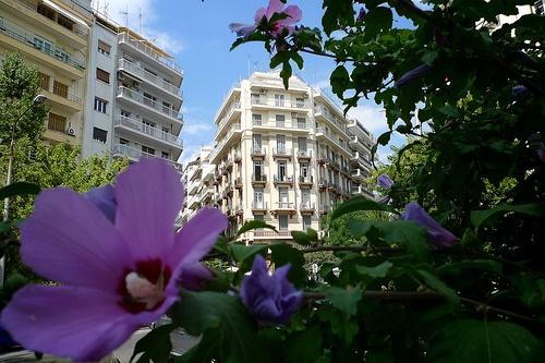 Greece. Thessaloniki and Chalkidiki