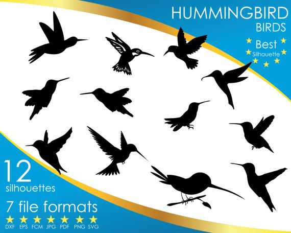 Hey, I found this really awesome Etsy listing at https://www.etsy.com/listing/501116980/12-silhouettes-hummingbird-bird-dxf-eps