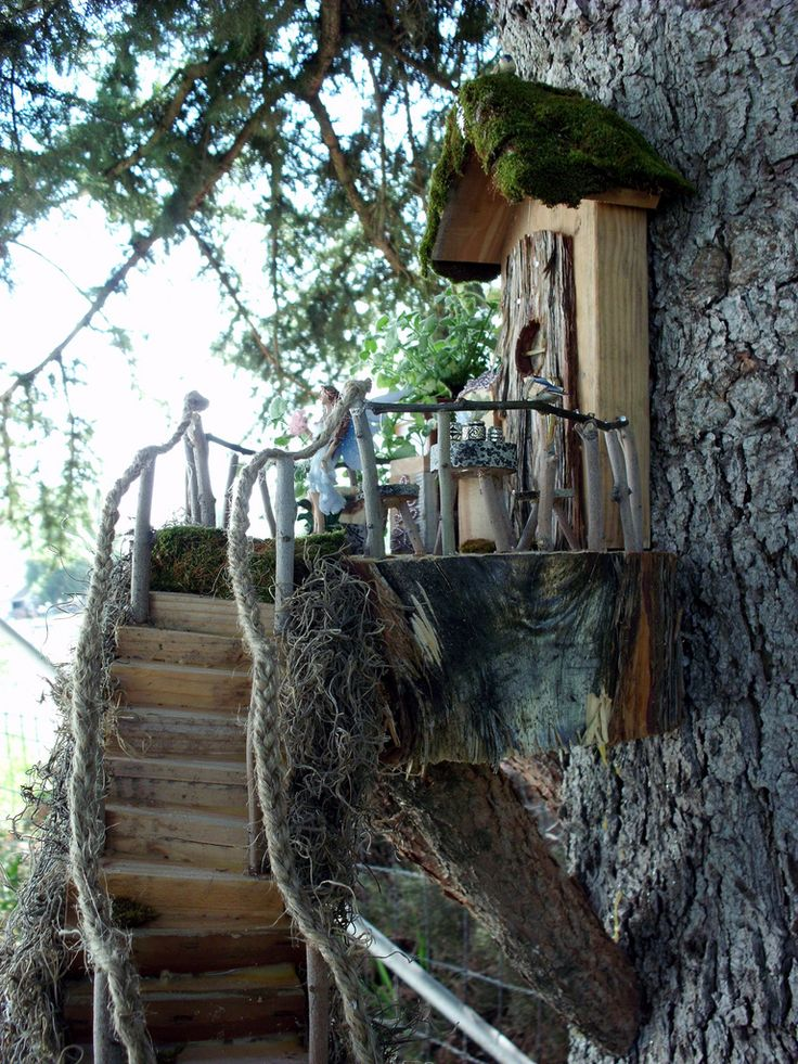 Treehouse And Fairies On Pinterest