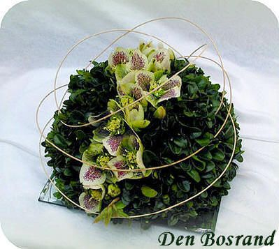 Flower arrangement in the spring with Hellebore and boxwood - tutorial
