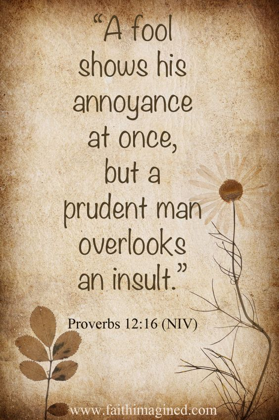 1000 ideas about proverbs on pinterest god lord and